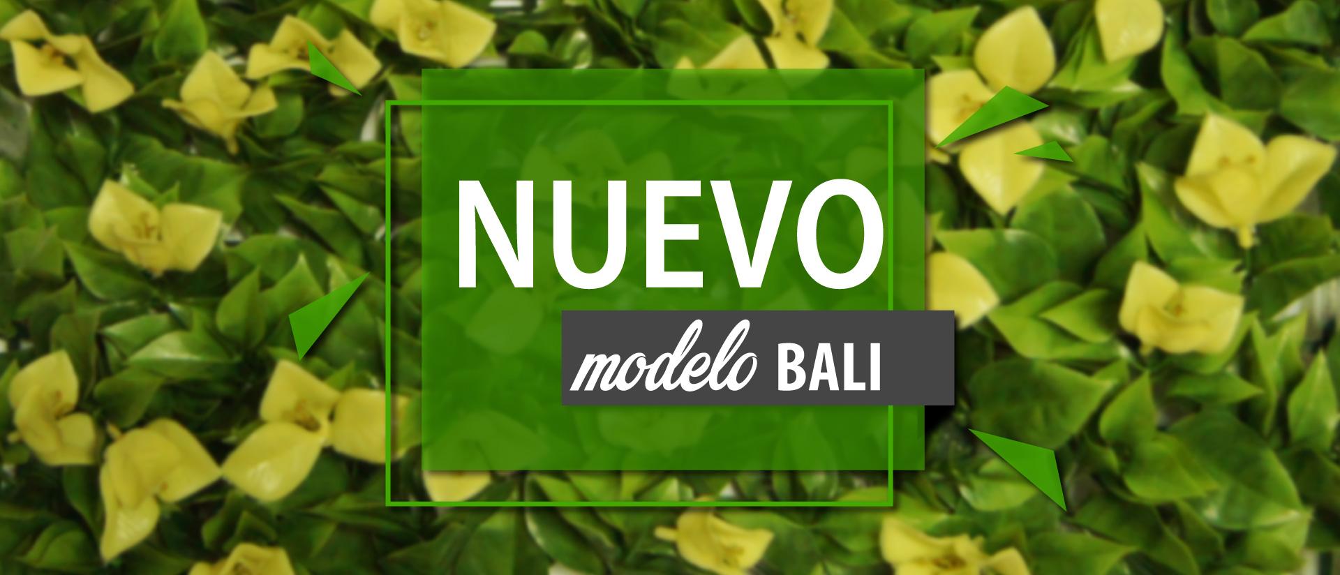 NUEVO-MODELO-2
